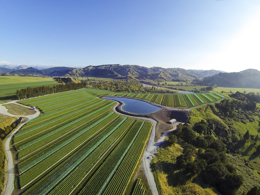 Riversun Whatatutu Field Nursery
